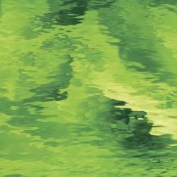 vert mousse Waterglass