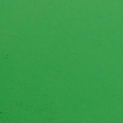 vert moyen
