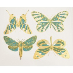 décalcomanie grands papillons turquoise et or