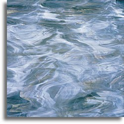 bleu acier/blanc, translucide